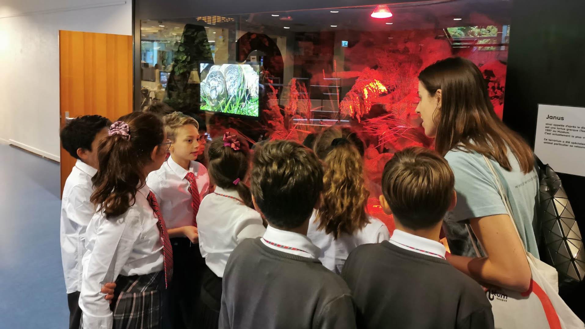 Natural History Museum in Geneva