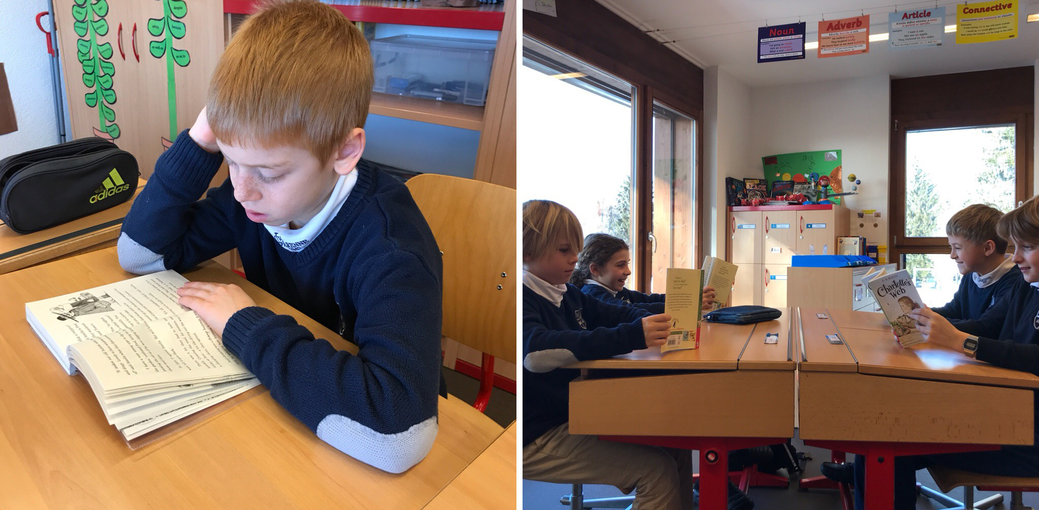 Let`s find out what Year 5 have been up to